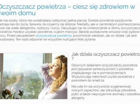 Oczyszczacz powietrza - K1