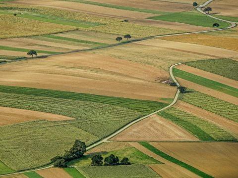 Budowa domu na działce rolnej – czy jest możliwa?
