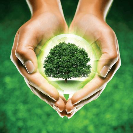 Lumea-MPX-wydajnosc-i-ochrona-przyrodnicza