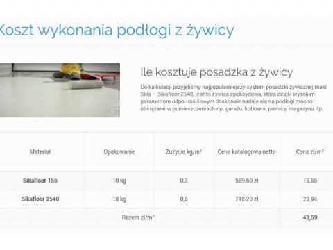 koszt wykonania podłogi z żywicy - A1