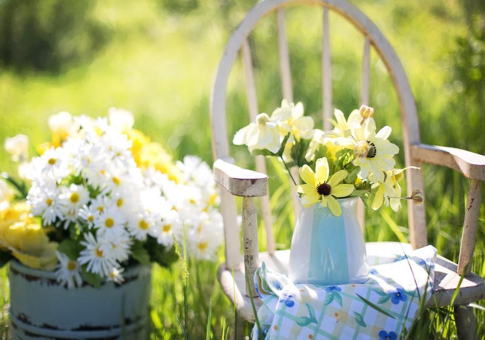 Udekoruj i odśwież swój ogród na wiosnę